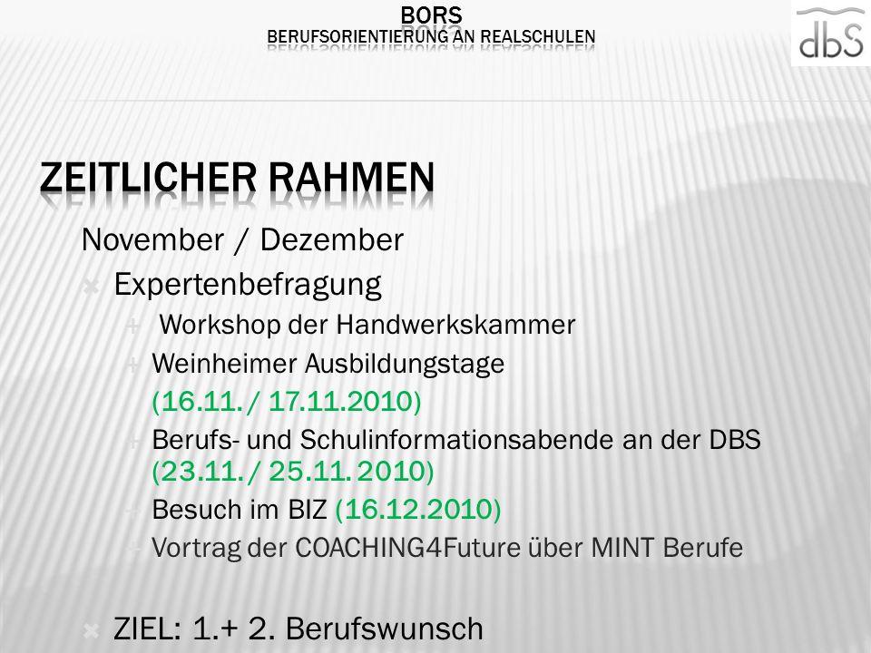 November / Dezember Expertenbefragung Workshop der Handwerkskammer Weinheimer Ausbildungstage (16.11. / 17.11.2010) Berufs- und Schulinformationsabend