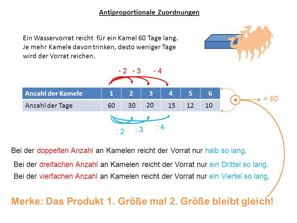 Anzahl der Kamele123456 Anzahl der Tage60 Antiproportionale Zuordnungen Das Schaubild Anzahl der Tage Anzahl der Kamele 3020151210 (10;6) (1;60) Die Punkte liegen auf einer besonderen Linie, der Hyperbel.