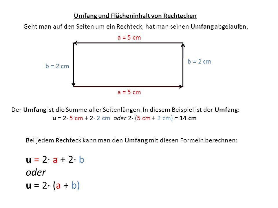 Umfang und Flächeninhalt von Rechtecken a = 5 cm b = 2 cm Legt man das Innere des Rechtecks mit Einheitsquadraten aus, erhält man ein Maß für seinen Flächeninhalt.