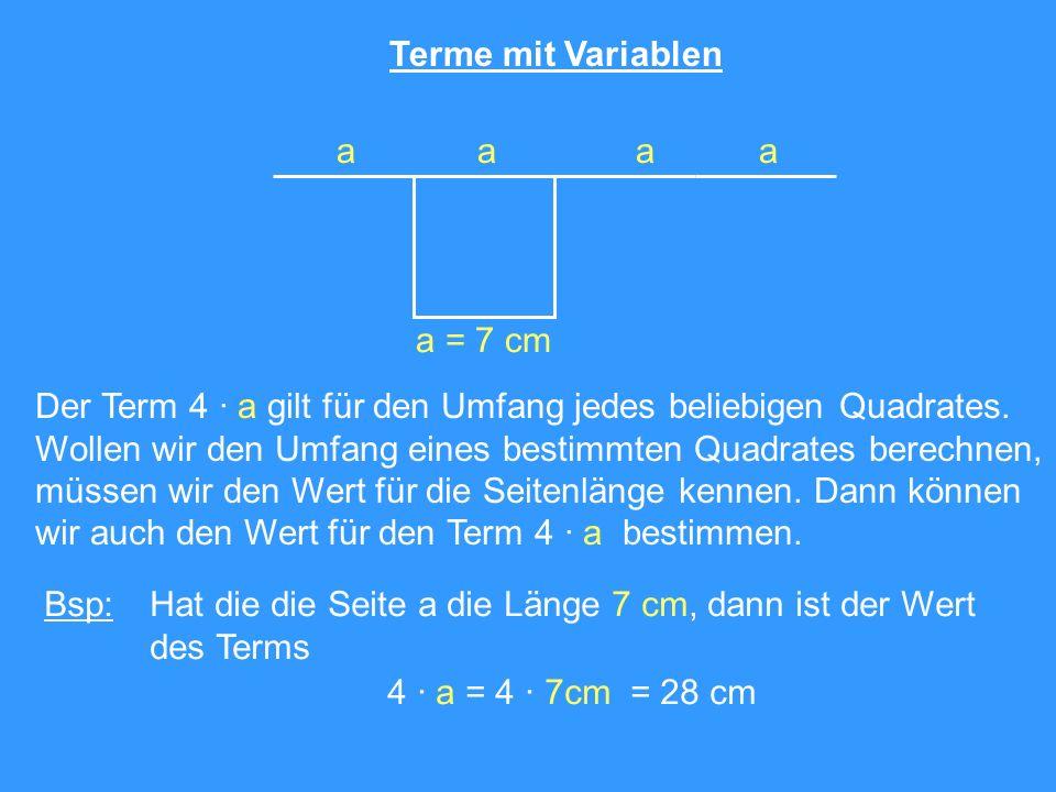 Terme mit Variablen aaaa Der Term 4 · a gilt für den Umfang jedes beliebigen Quadrates. Wollen wir den Umfang eines bestimmten Quadrates berechnen, mü