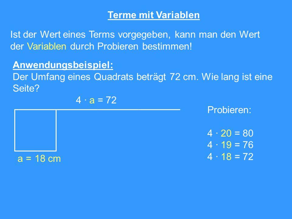 Terme mit Variablen Ist der Wert eines Terms vorgegeben, kann man den Wert der Variablen durch Probieren bestimmen! Anwendungsbeispiel: Der Umfang ein