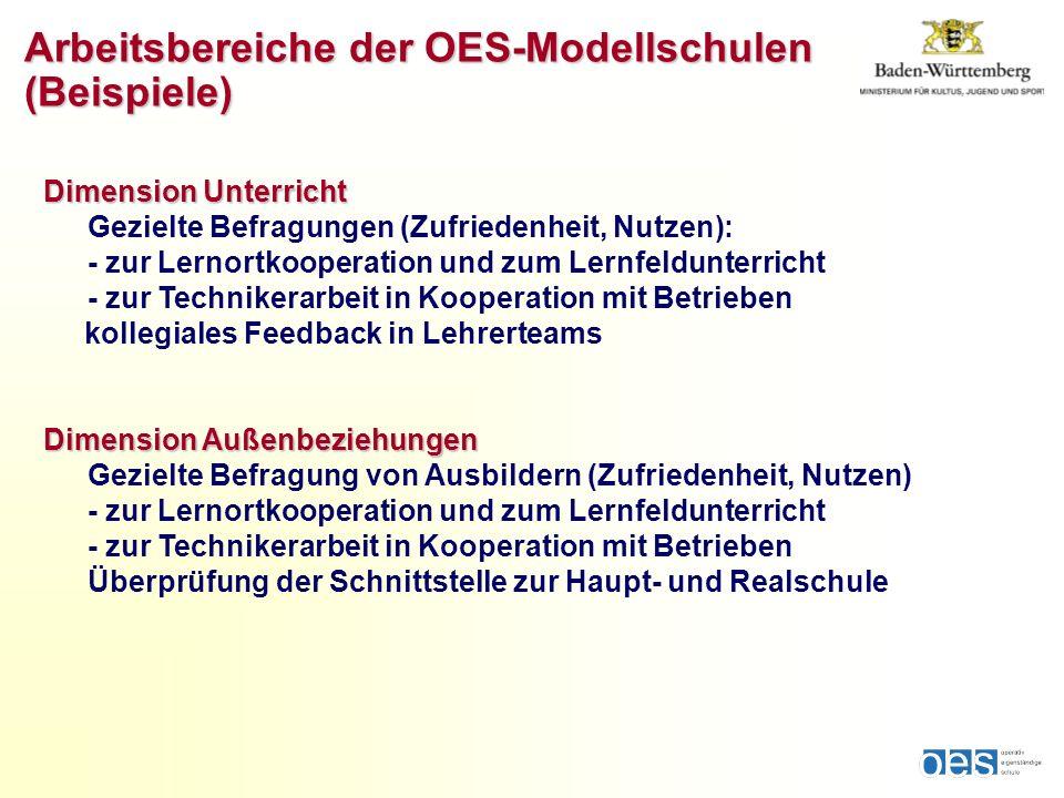 Dimension Unterricht Gezielte Befragungen (Zufriedenheit, Nutzen): - zur Lernortkooperation und zum Lernfeldunterricht - zur Technikerarbeit in Kooper