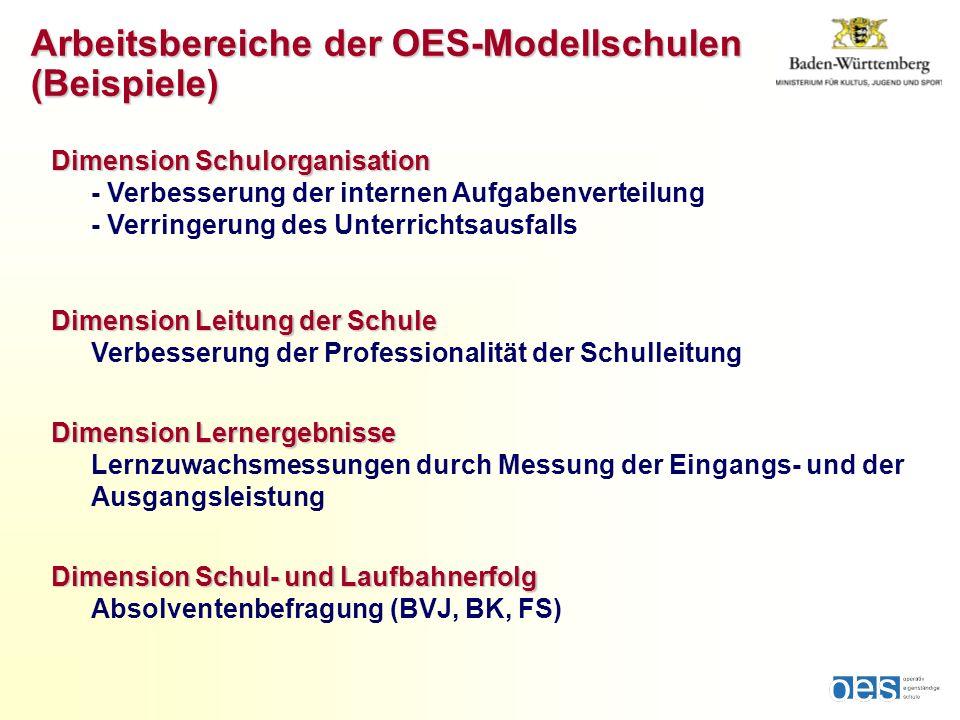 Dimension Schulorganisation Dimension Schulorganisation - Verbesserung der internen Aufgabenverteilung - Verringerung des Unterrichtsausfalls Dimensio