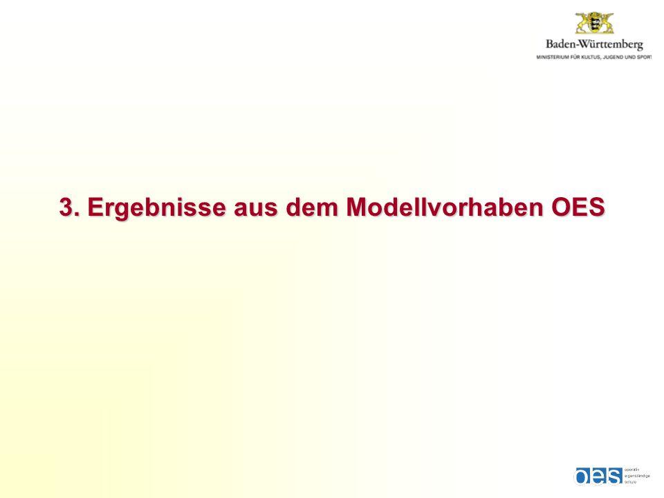 3. Ergebnisse aus dem Modellvorhaben OES