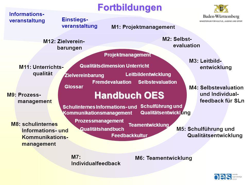 Prozessmanagement Projektmanagement Fremdevaluation Teamentwicklung Feedbackkultur Selbstevaluation Leitbildentwicklung Schulführung und Qualitätsentw