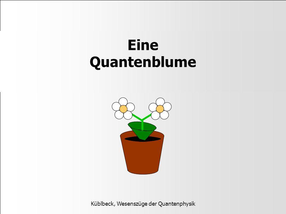 Eine Quantenblume Küblbeck, Wesenszüge der Quantenphysik