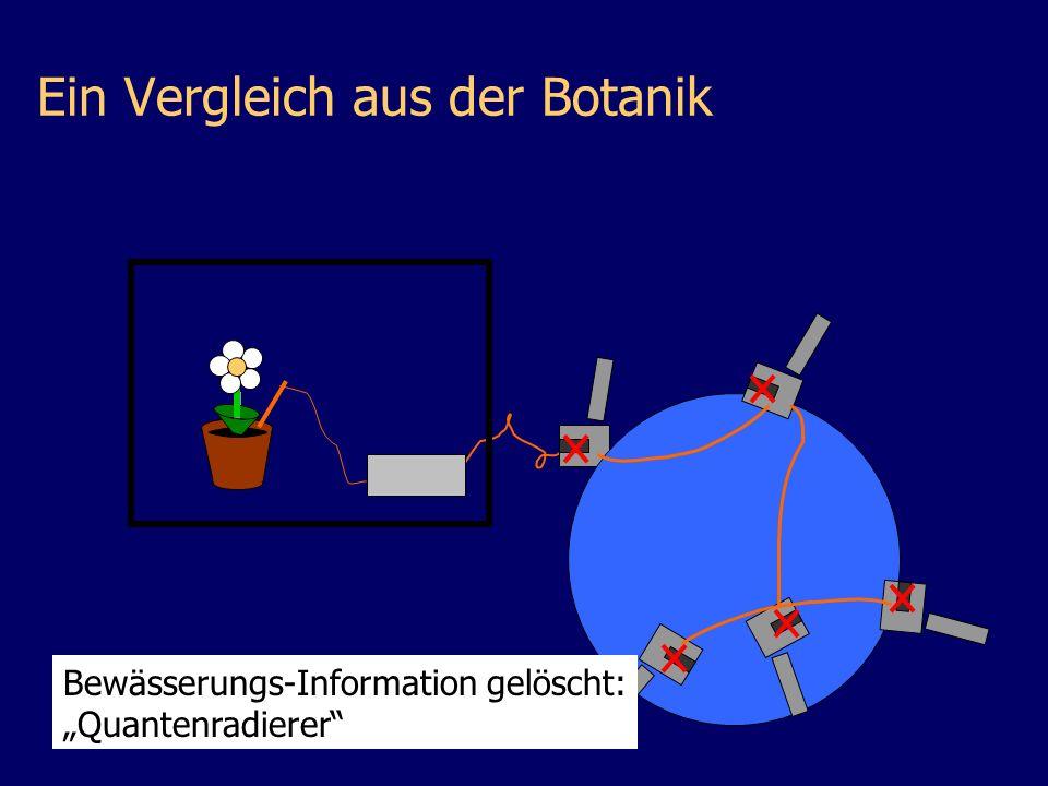 Ein Vergleich aus der Botanik Bewässerungs-Information gelöscht: Quantenradierer