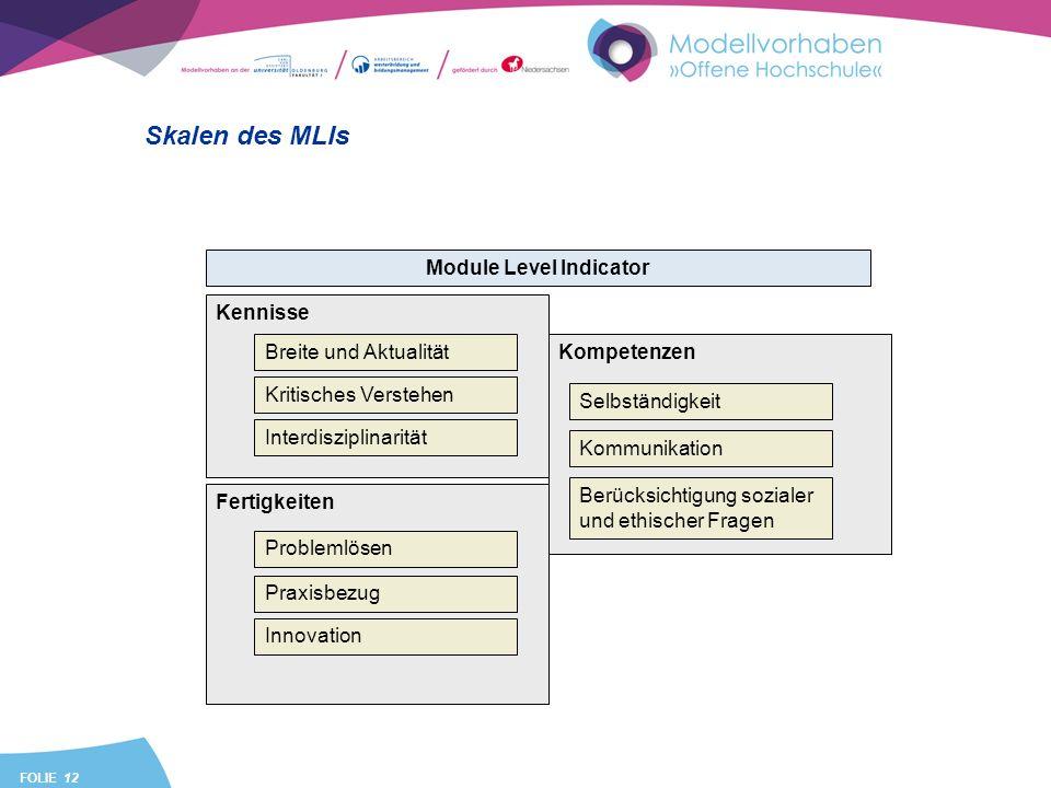 FOLIE 12 Kompetenzen Skalen des MLIs Kennisse Module Level Indicator Breite und Aktualität Kritisches Verstehen Interdisziplinarität Fertigkeiten Prob