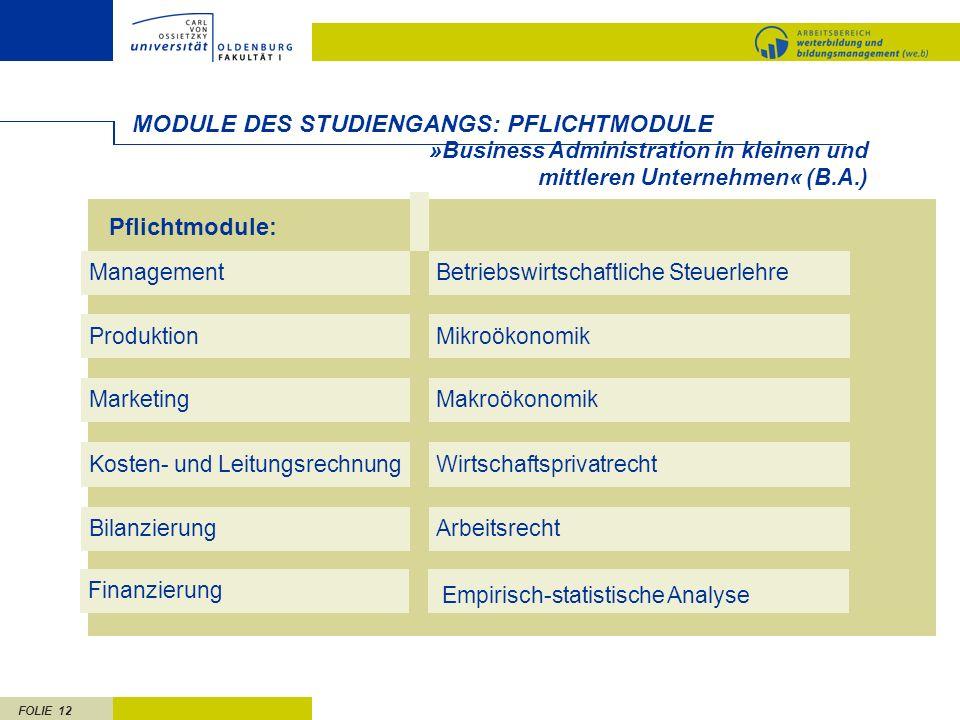FOLIE 12 MODULE DES STUDIENGANGS: PFLICHTMODULE MarketingMakroökonomik ProduktionMikroökonomik ManagementBetriebswirtschaftliche Steuerlehre Pflichtmo