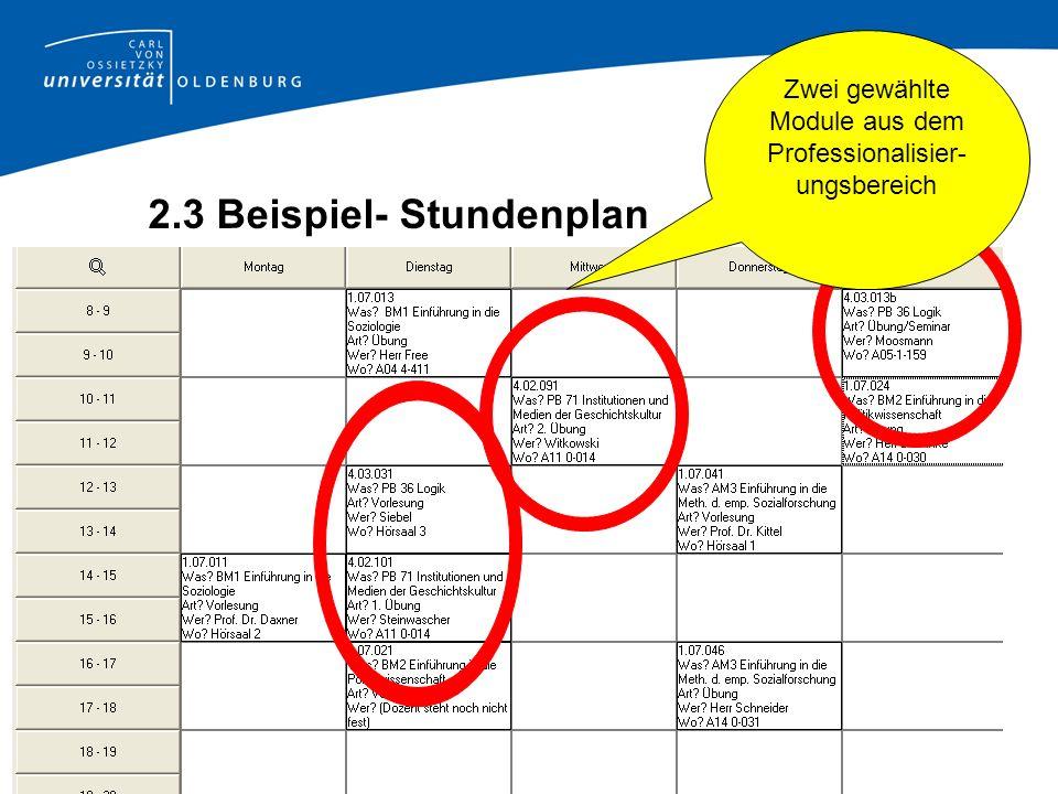 Zwei gewählte Module aus dem Professionalisier- ungsbereich