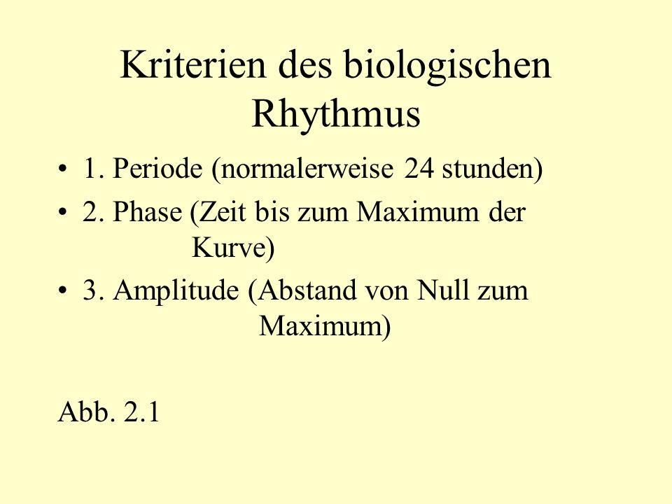 Verschiebung des Schlafrhythmus Durch kurze Nachtschichtphasen verändert sich der Schlafrhythmus Die exogene Komponente stellt sich sofort auf den neuen Rhythmus ein Die endogene Komponente zunächst nicht, da die externen Zeitgeber konstant bleiben