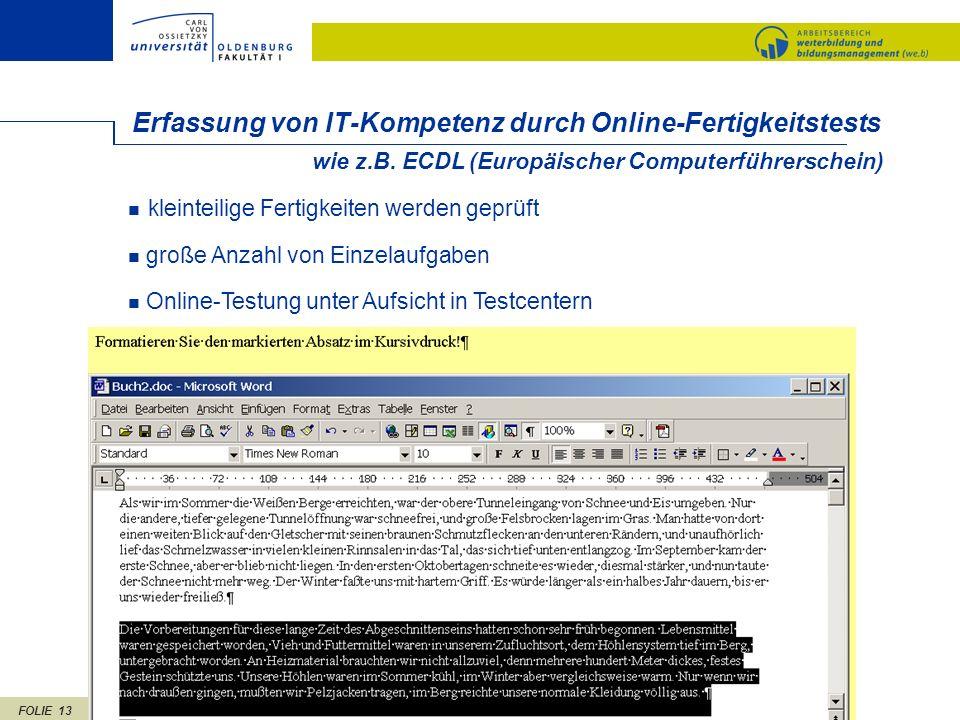 FOLIE 13 wie z.B. ECDL (Europäischer Computerführerschein) Erfassung von IT-Kompetenz durch Online-Fertigkeitstests kleinteilige Fertigkeiten werden g