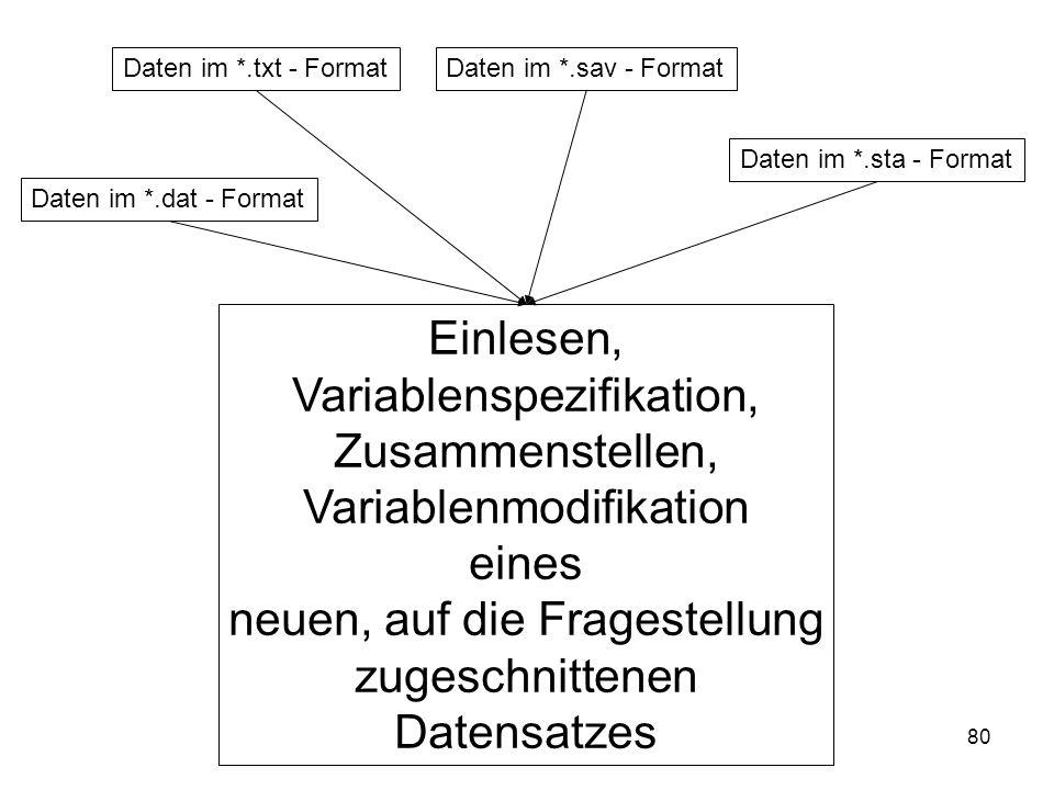 80 Daten im *.txt - FormatDaten im *.sav - Format Daten im *.sta - Format Einlesen, Variablenspezifikation, Zusammenstellen, Variablenmodifikation ein