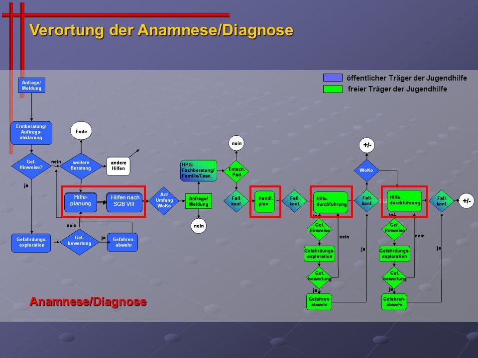 Verortung der Anamnese/Diagnose öffentlicher Träger der Jugendhilfe freier Träger der Jugendhilfe Hilfe- planung Hilfen nach SGB VIII Anamnese/Diagnos
