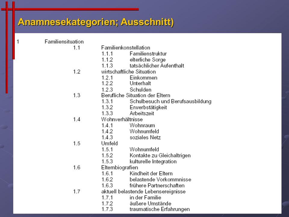 Anamnesekategorien; Ausschnitt)