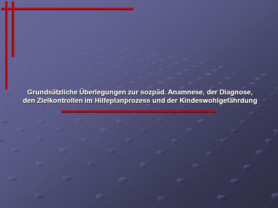 Anamnesekategorien (Bayern*) (*Quelle: Sozialpädagogische Diagnose des Bayerisches Landesjugendamtes)