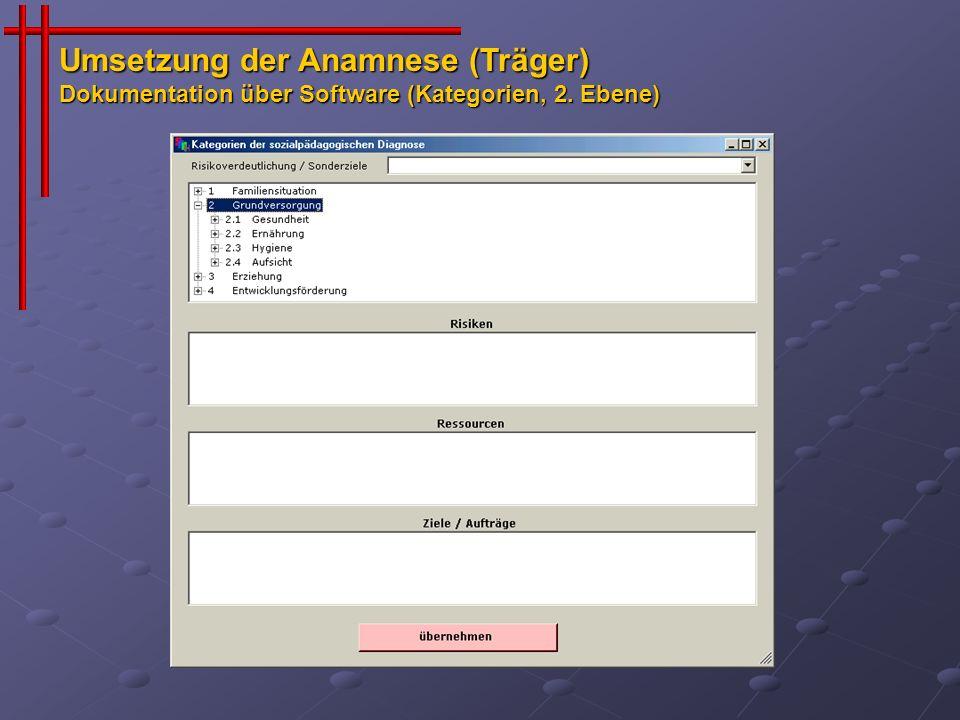 Umsetzung der Anamnese (Träger) Dokumentation über Software (Kategorien, 2. Ebene)