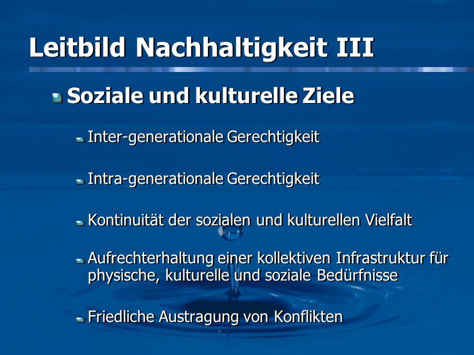 Leitbild Nachhaltigkeit III Soziale und kulturelle Ziele Inter-generationale Gerechtigkeit Intra-generationale Gerechtigkeit Kontinuität der sozialen