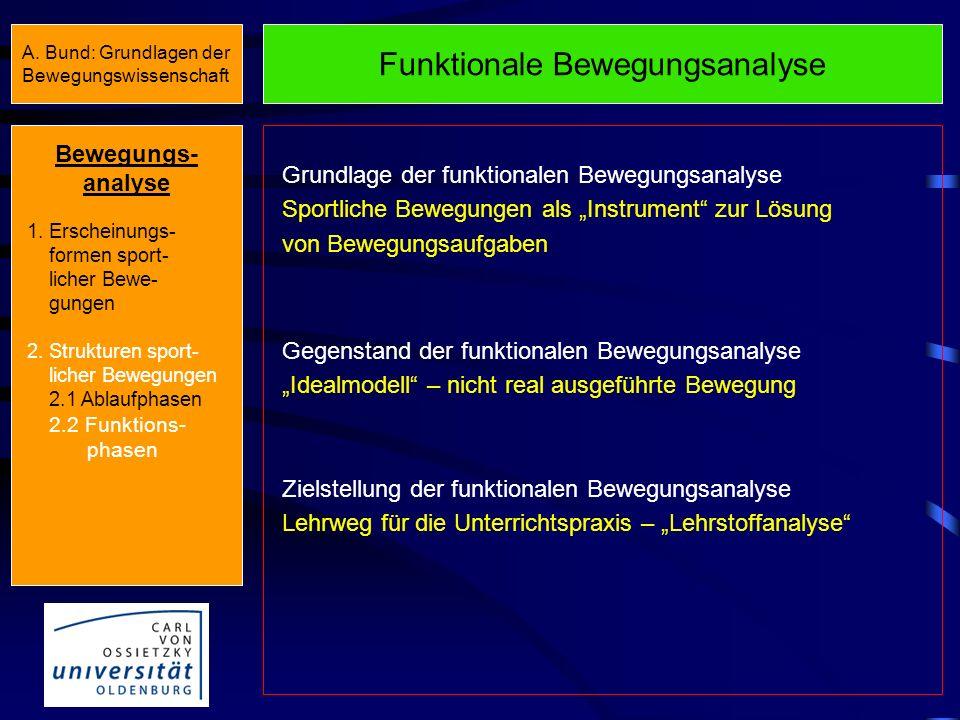 Morphologische Bewegungsanalyse Vorbereitungs- phase HauptphaseEndphase Azyklische Bewegungen Zwischenphase (E 1 + V 2 ) Hauptphase Zyklische Bewegung