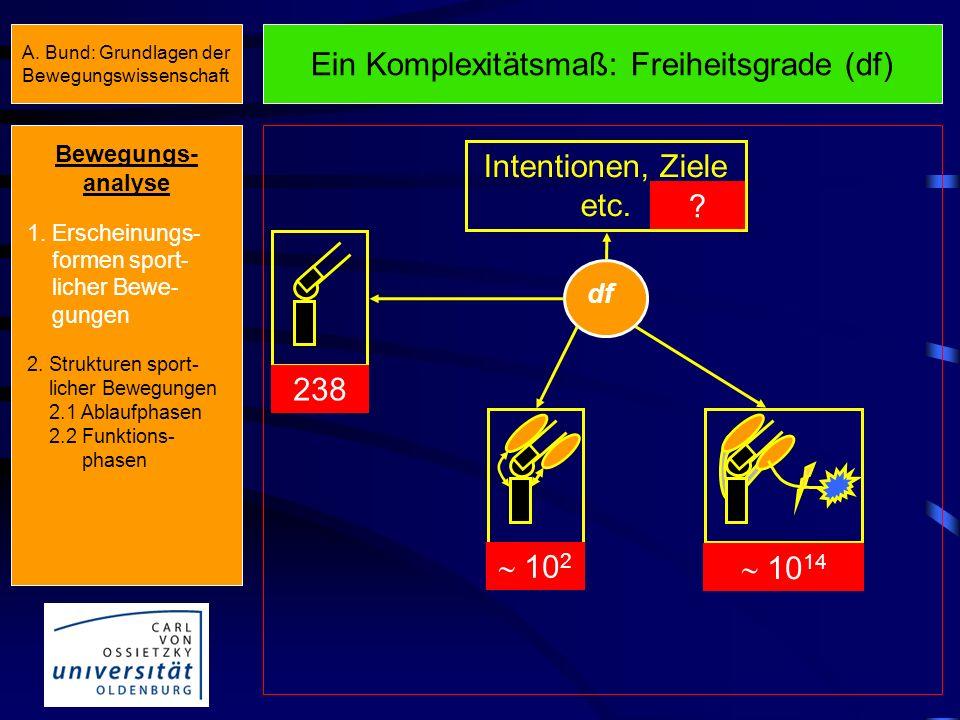 Ein Komplexitätsmaß: Freiheitsgrade (df) df Intentionen, Ziele etc.