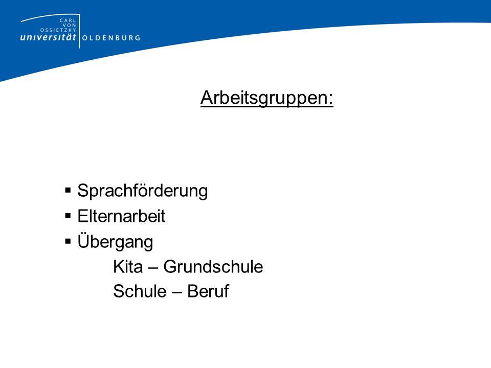Forschungsverlaufsplan Februar 2008 Vorstellung des Forschungsvorhabens in den zu interviewenden Klassen der Hauptschule Achim