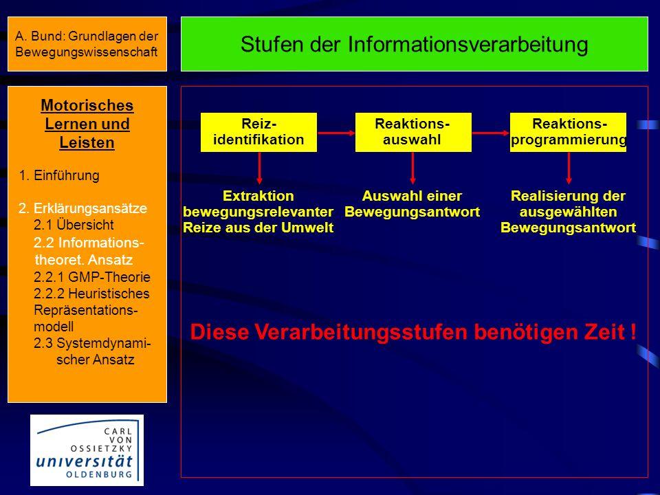 Invarianz von Bewegungsstrukturen Motorisches Lernen und Leisten 1. Einführung 2. Erklärungsansätze 2.1 Übersicht 2.2 Informations- theoret. Ansatz 2.
