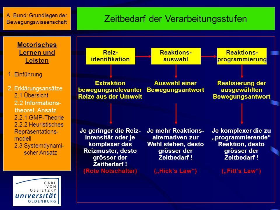 Stufen der Informationsverarbeitung Extraktion bewegungsrelevanter Reize aus der Umwelt Reiz- identifikation Reaktions- auswahl Reaktions- programmier