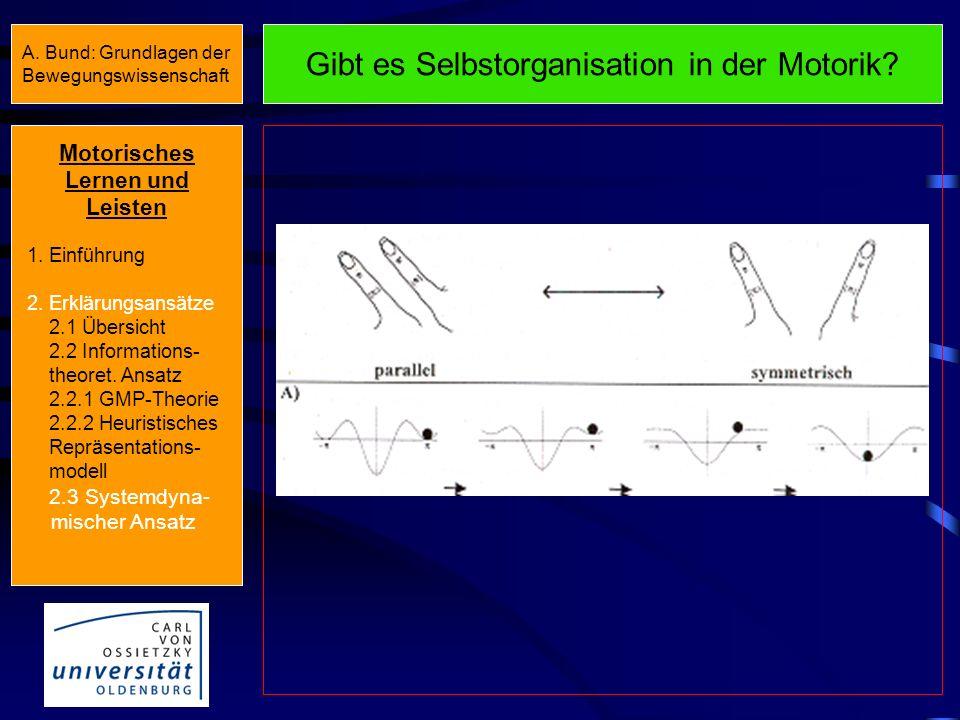 Systemdynamischer Ansatz: Grundannahmen Die menschliche Motorik ist ein dynamisches und komplexes, d.h. aus vielen Einzelkomponenten bestehendes Syste