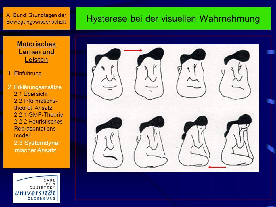 Hysterese und kritische Fluktuationen y x Zustand B Kritische Fluktuationen Zustand A Motorisches Lernen und Leisten 1. Einführung 2. Erklärungsansätz