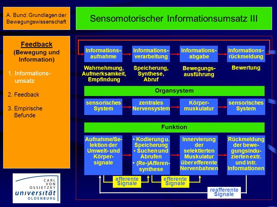 Sensomotorischer Informationsumsatz II Reiz- identifikation Stufen der Informationsverarbeitung Reaktions- auswahl Reaktionspro- grammierung Informati