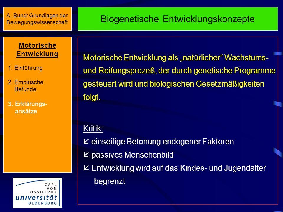 Überblick AnlageUmwelt Biogenetische Entwicklungskonzepte Biogenetische Entwicklungskonzepte Gesell (1940) Busemann (1950) Remplein (1969) Sears (1947
