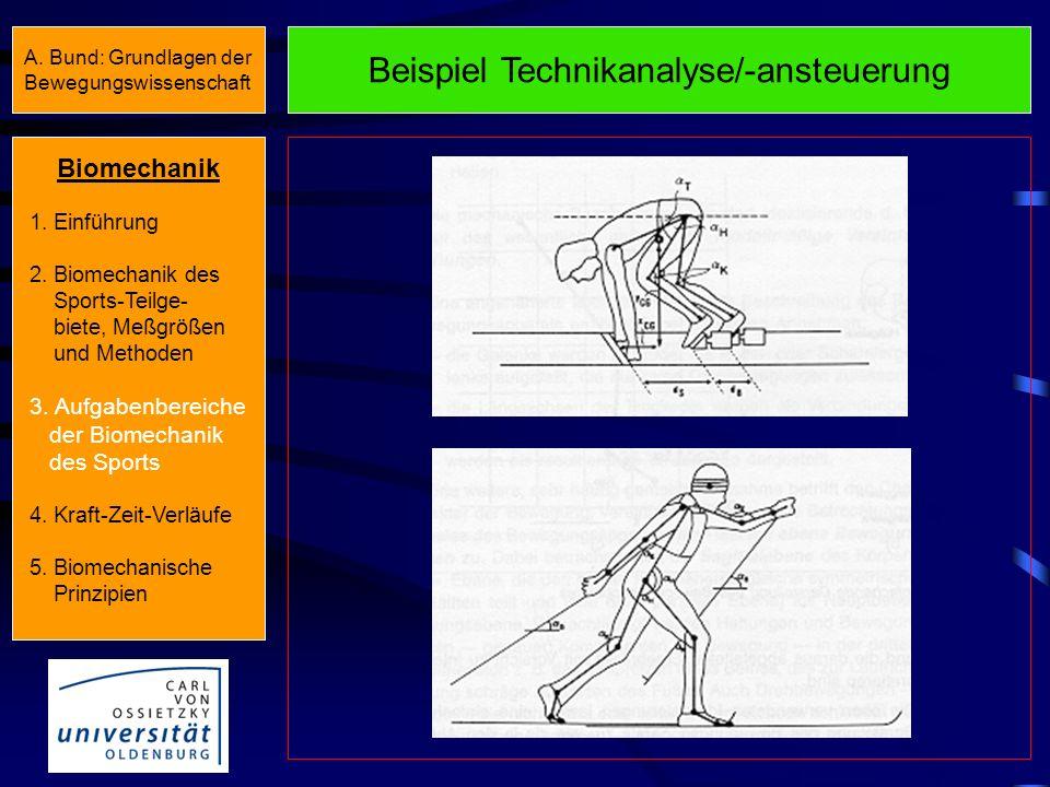 Aufgabenbereiche Aufgabenbereiche der Leistungsbiomechanik (Äußere Biomechanik) Technikanalyse TechnikansteuerungKonditionsansteuerung Konditionsanaly
