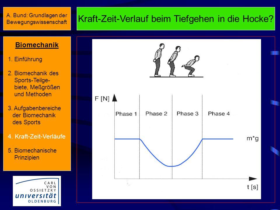 Kraft-Zeit-Verlauf beim Stehen Biomechanik 1. Einführung 2. Biomechanik des Sports-Teilge- biete, Meßgrößen und Methoden 3. Aufgabenbereiche der Biome