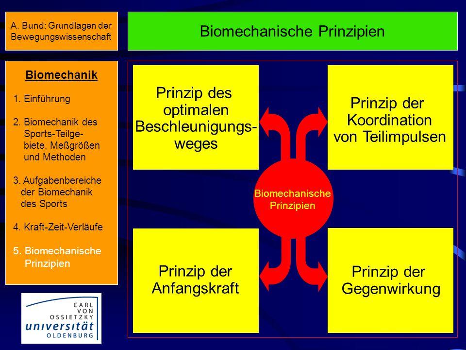 Definition Sie (die biomechanischen Prinzipien, A.B.) enthalten die allgemeinsten Erkenntnisse über das rationelle Ausnutzen der mechanischen Gesetze