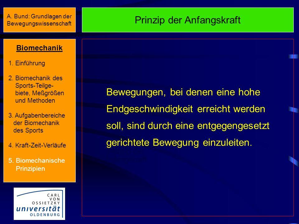 Biomechanische Prinzipien Biomechanische Prinzipien Prinzip der Koordination von Teilimpulsen Prinzip des optimalen Beschleunigungs- weges Prinzip der