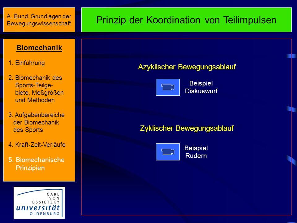 Prinzip der Anfangskraft Beispiel Volleyball Beispiel Sprintstart Aussetzen des Prinzips bei Zeitdruck Biomechanik 1. Einführung 2. Biomechanik des Sp