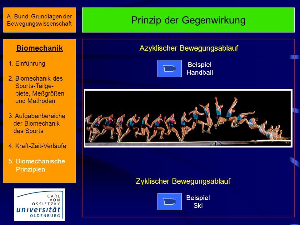 Prinzip der Koordination von Teilimpulsen Beispiel Diskuswurf Beispiel Rudern Zyklischer Bewegungsablauf Azyklischer Bewegungsablauf Biomechanik 1. Ei
