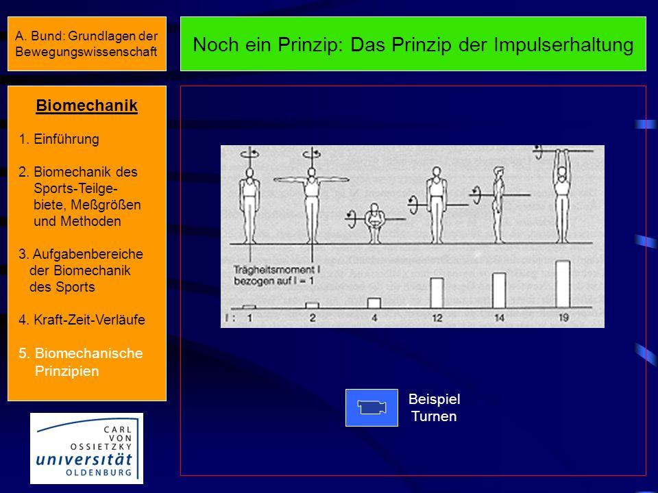 Prinzip der Gegenwirkung Beispiel Handball Beispiel Ski Zyklischer Bewegungsablauf Azyklischer BewegungsablaufBiomechanik 1. Einführung 2. Biomechanik