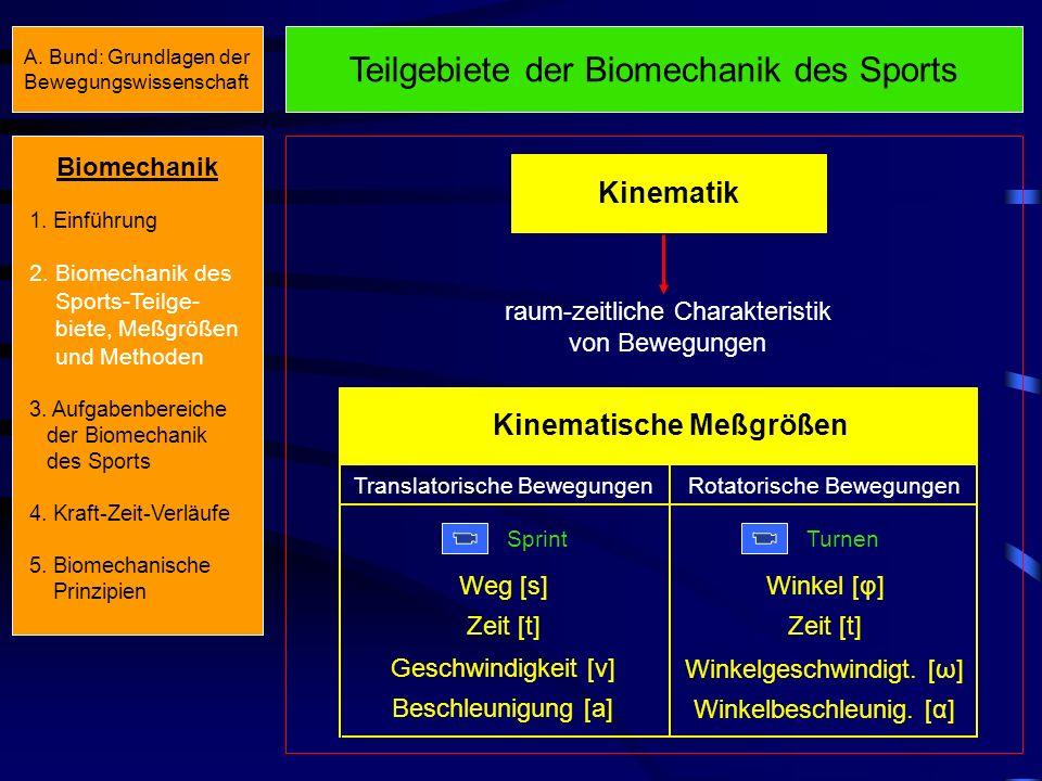 Teilgebiete der Biomechanik des Sports Kinematik raum-zeitliche Charakteristik von Bewegungen Kinematische Meßgrößen Translatorische Bewegungen Sprint Rotatorische Bewegungen Turnen Weg [s] Zeit [t] Geschwindigkeit [v] Beschleunigung [a] Winkel [φ] Zeit [t] Winkelgeschwindigt.