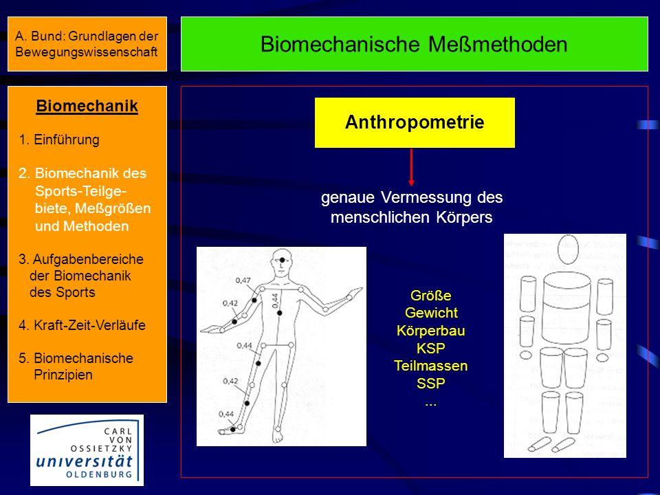 Biomechanische Meßmethoden Anthropometrie genaue Vermessung des menschlichen Körpers Größe Gewicht Körperbau KSP Teilmassen SSP...