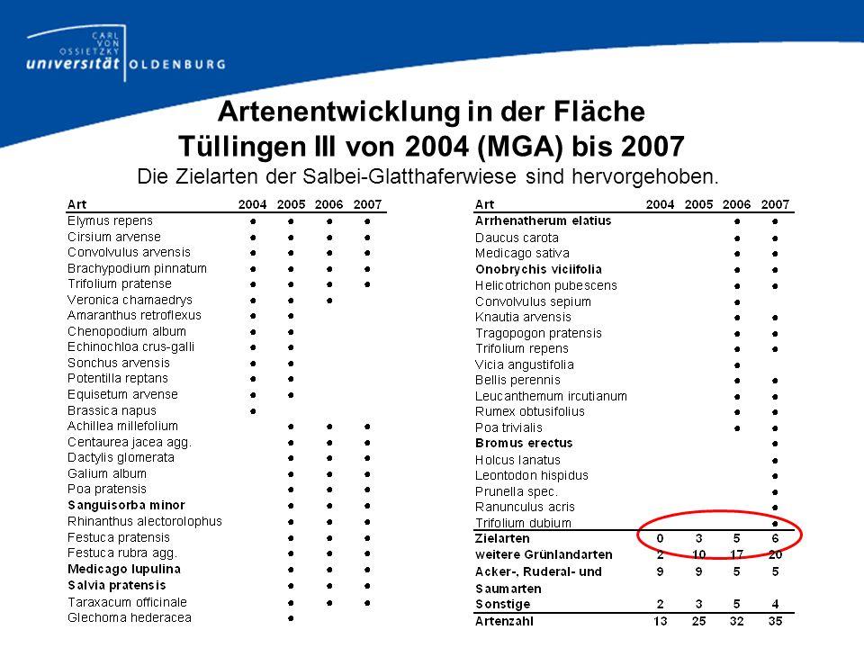 Artenentwicklung in der Fläche Tüllingen III von 2004 (MGA) bis 2007 Die Zielarten der Salbei-Glatthaferwiese sind hervorgehoben.