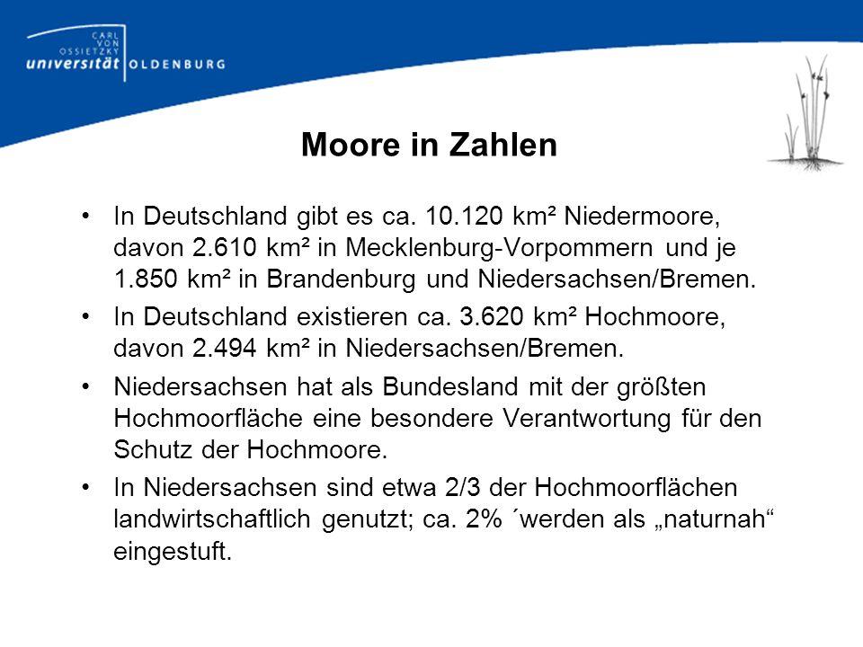 Bundesweit wurden für rund 35.000 ha, in Nieder- sachsen für rund 30.000 ha Hochmoor Abtorfungs- genehmigungen erteilt.