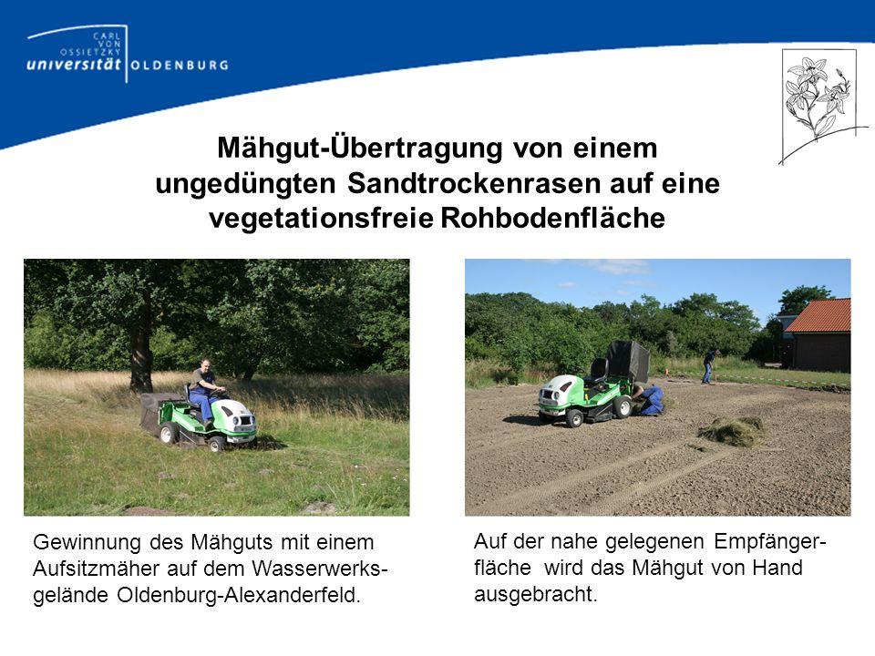 Fragestellungen (II) im Projekt Wiederherstellung und Neuschaffung artenreicher Mähwiesen durch Mähgut-Aufbringung – ein Beitrag zum Naturschutz in intensiv genutzten Landschaften Zu welchem Zeitpunkt sollten Mahd der Spenderfläche und Übertragung des Mähgutes erfolgen.