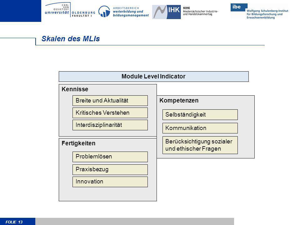 FOLIE 13 Kompetenzen Skalen des MLIs Kennisse Module Level Indicator Breite und Aktualität Kritisches Verstehen Interdisziplinarität Fertigkeiten Prob