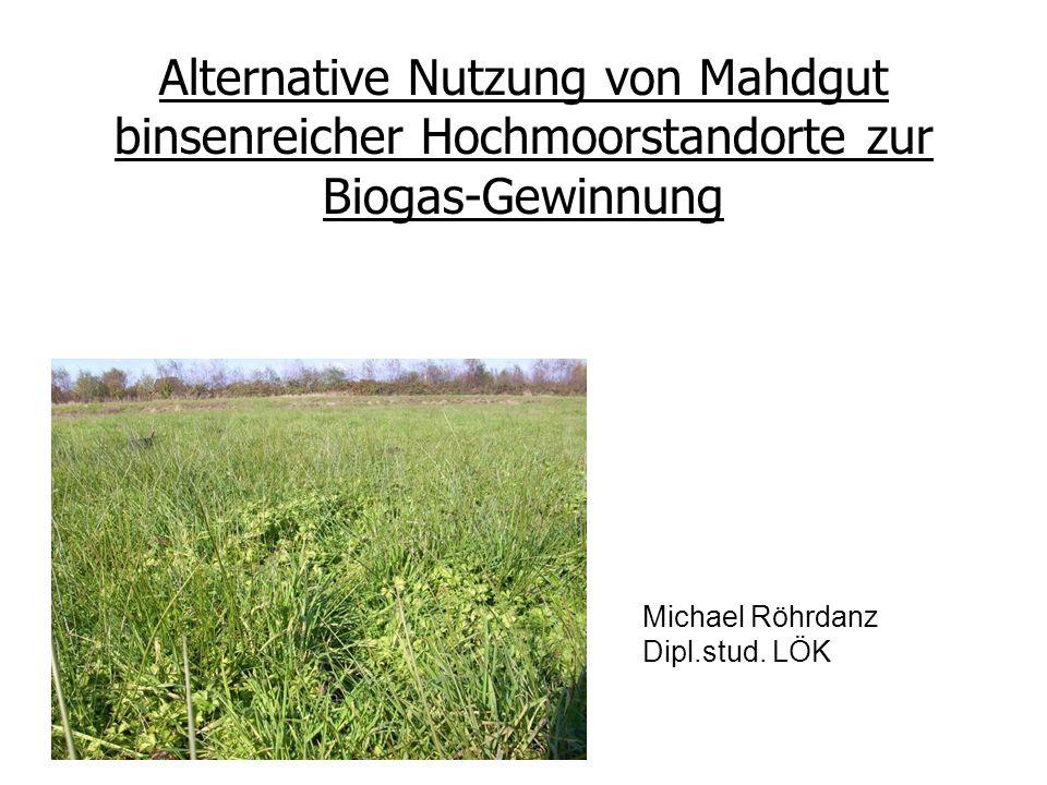 Gliederung 1 – Anlass 2 – (Prozess-) Technische Aspekte des Biogasprozesses 3 – Meine Untersuchungen 4 – Ausblick