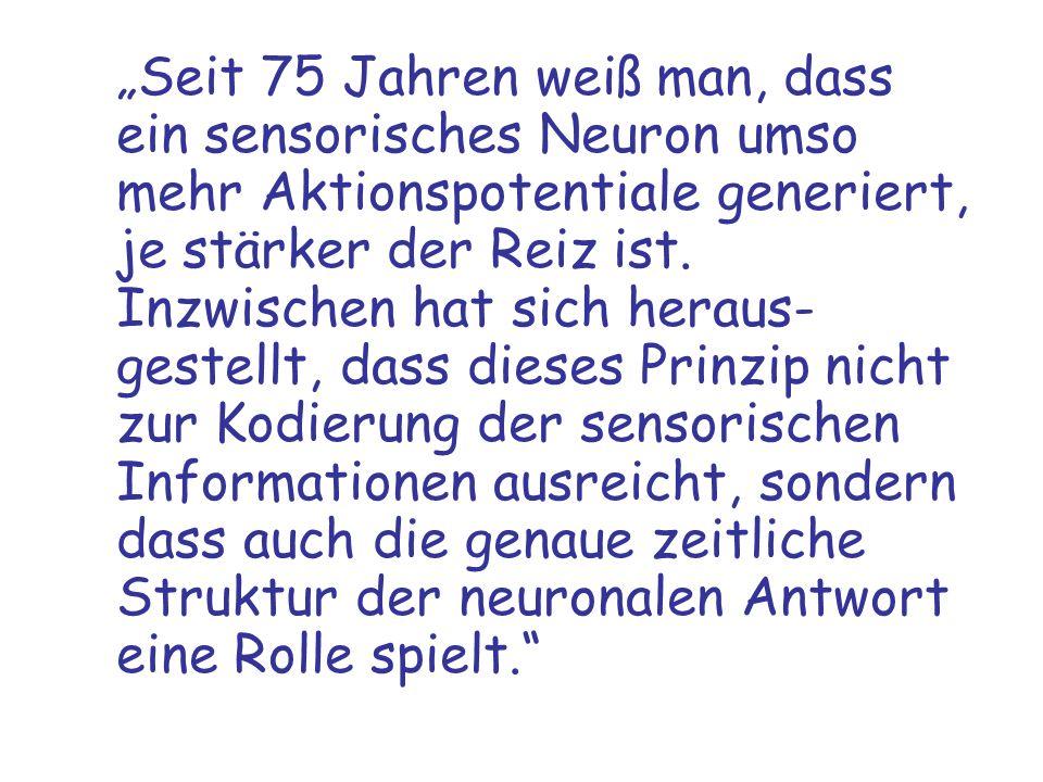 Seit 75 Jahren weiß man, dass ein sensorisches Neuron umso mehr Aktionspotentiale generiert, je stärker der Reiz ist. Inzwischen hat sich heraus- gest