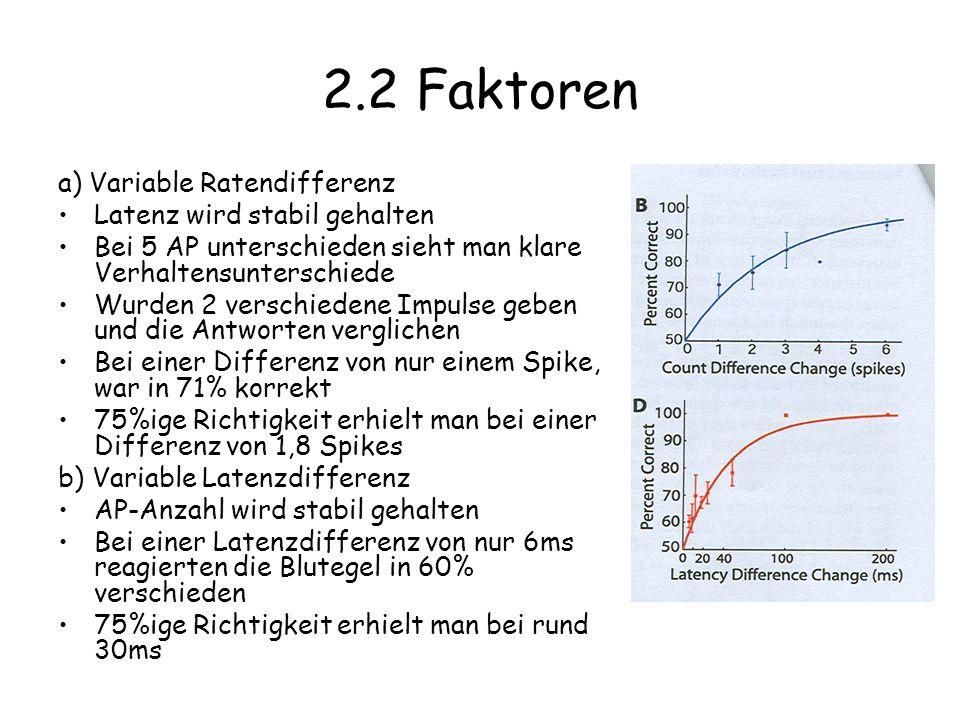 2.2 Faktoren a) Variable Ratendifferenz Latenz wird stabil gehalten Bei 5 AP unterschieden sieht man klare Verhaltensunterschiede Wurden 2 verschiedene Impulse geben und die Antworten verglichen Bei einer Differenz von nur einem Spike, war in 71% korrekt 75%ige Richtigkeit erhielt man bei einer Differenz von 1,8 Spikes b) Variable Latenzdifferenz AP-Anzahl wird stabil gehalten Bei einer Latenzdifferenz von nur 6ms reagierten die Blutegel in 60% verschieden 75%ige Richtigkeit erhielt man bei rund 30ms