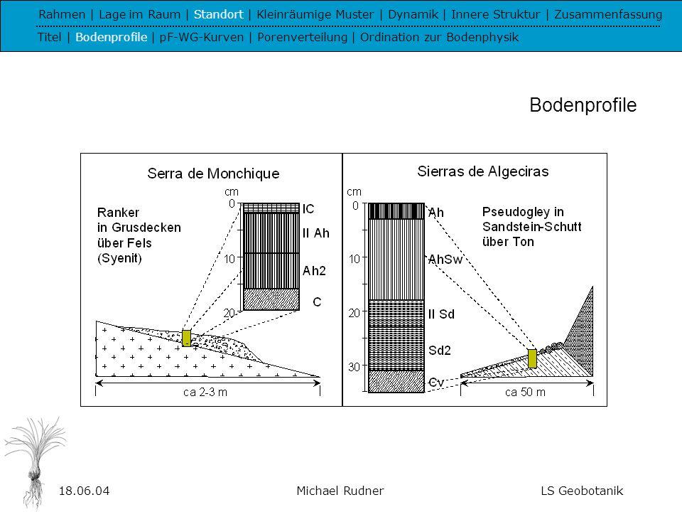18.06.04Michael RudnerLS Geobotanik pF-WG-Kurven Rahmen | Lage im Raum | Standort | Kleinräumige Muster | Dynamik | Innere Struktur | Zusammenfassung Titel | Bodenprofile | pF-WG-Kurven | Porenverteilung | Ordination zur Bodenphysik