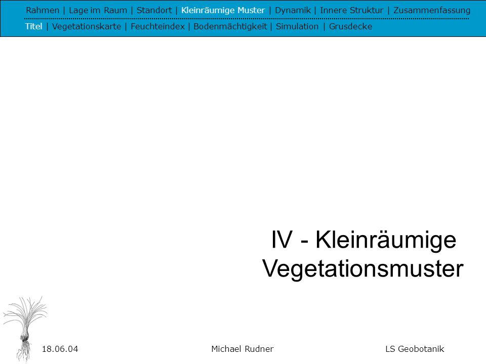 18.06.04Michael RudnerLS Geobotanik Hangausschnitt bei Caldas de Monchique (16 m x 35 m, 252 - 258 m ü, NN) Laurentio-Juncetum Junco-Isoetetum Loto-Chaetopogonetum Helianthemo-Plantaginetum Hyparrhenia-Asphodelus-Rasen Kryptogamenreiche Gesellschaft Stauden Sträucher Fels Nasser Fels Isohypsen (0,25 m) Rahmen | Lage im Raum | Standort | Kleinräumige Muster | Dynamik | Innere Struktur | Zusammenfassung Titel | Vegetationskarte | Feuchteindex | Bodenmächtigkeit | Simulation | Grusdecke