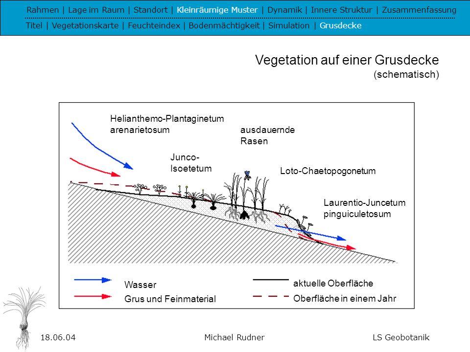 18.06.04Michael RudnerLS Geobotanik V - Dynamik von Boden- wasserhaushalt und Vegetation Rahmen | Lage im Raum | Standort | Kleinräumige Muster | Dynamik | Innere Struktur | Zusammenfassung Titel | Bodenwasser | Vegetation